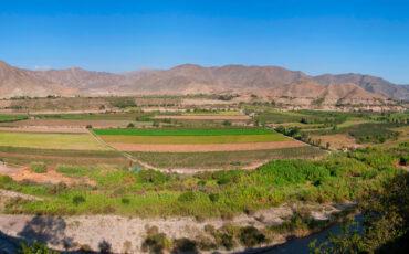 Azpitia paisaje